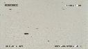 281503-3-04-52-02-FREGATES-BEBE_TORTUES